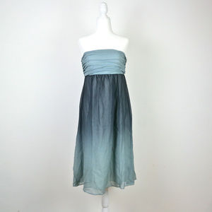 THE LIMITED Strapless Ombre Silk Dress